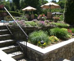 Retaining Walls and Steps