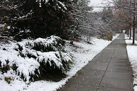 Snow Response for Commercial Landscapes in Bergen County, NJ