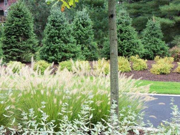 6 Simple Landscape Improvements for your Commercial Property