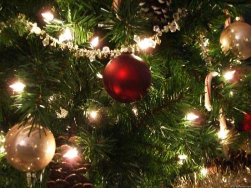 Large Colored Christmas Lights