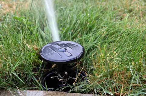Sprinkler Systems Bergen County Irrigation