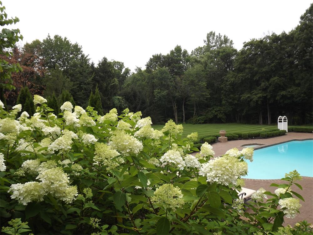 Landscape Maintenance - Bergen County, NJ