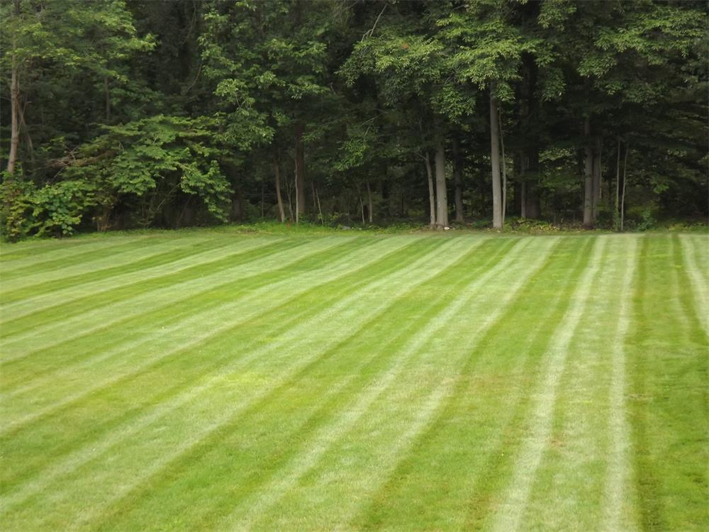 Irrigation & Sprinkler Systems - Bergen County, NJ