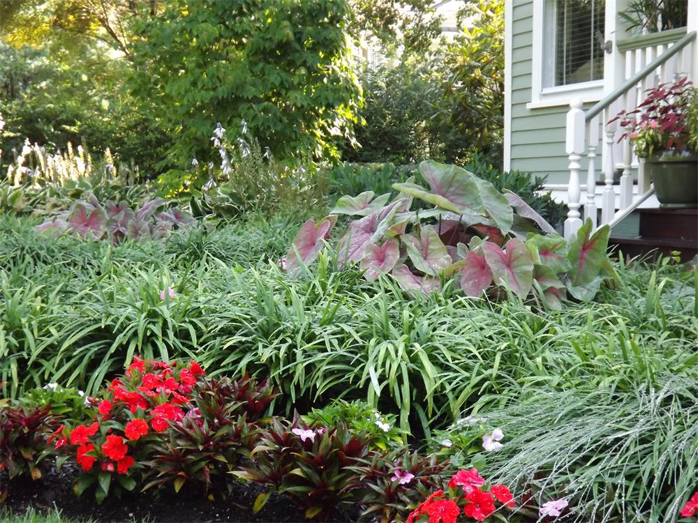 Irrigation Sprinkler Systems Bergen County NJ