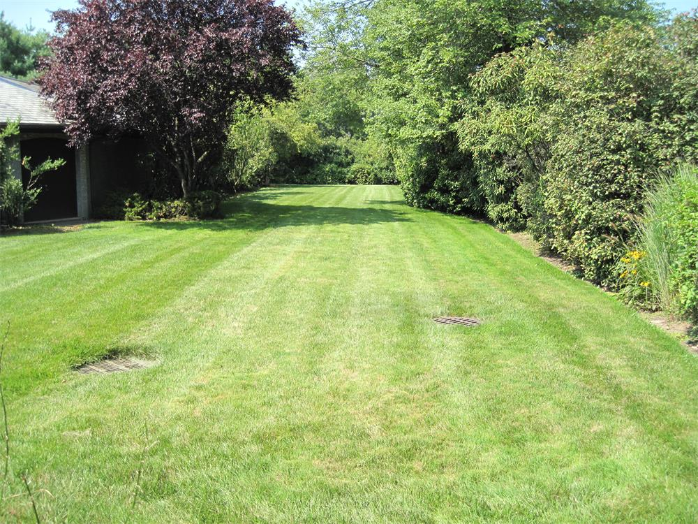 Drainage Landscaper - Bergen County, NJ