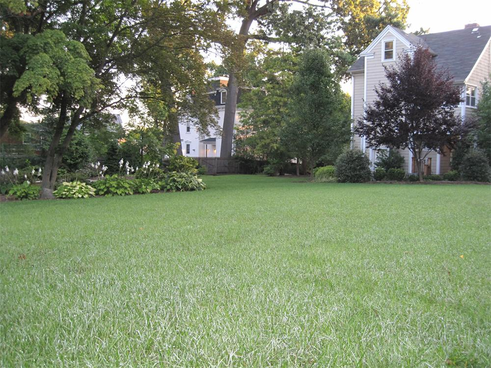 nj lawn care bergen county landscaper