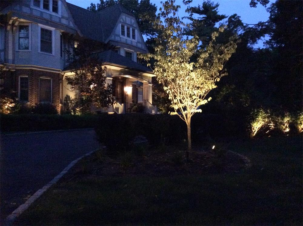 Bergen County, NJ Landscape Lighting