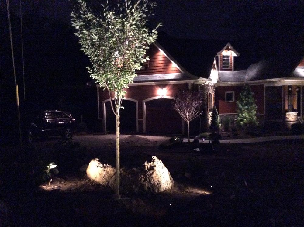 Outdoor lighting on landscape planting