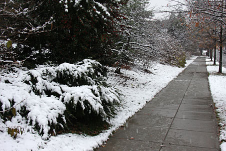 Snow Management Company in Bergen County, NJ